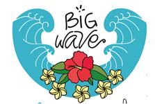 Escuela de Surf en El Palmar (Cádiz) - Big Wave Escuela de Surf